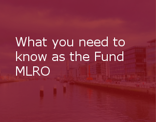 What You Need To Know As The Fund MLRO